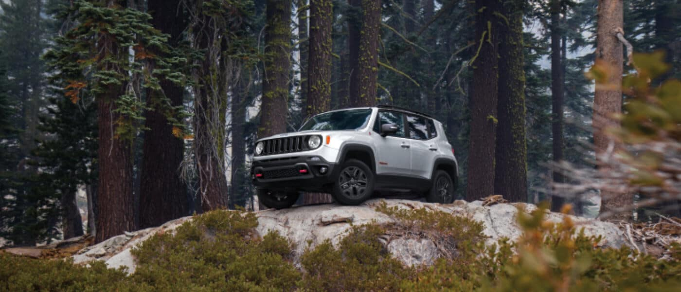 A white 2020 Jeep Rengade parked in a forest