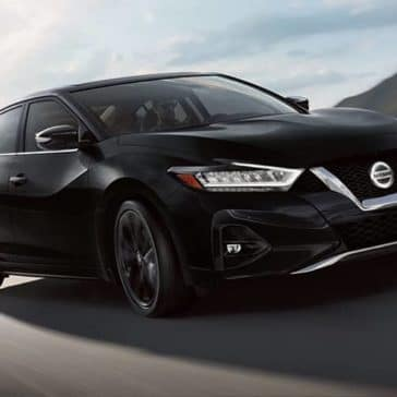 2019 Nissan Maxima Black