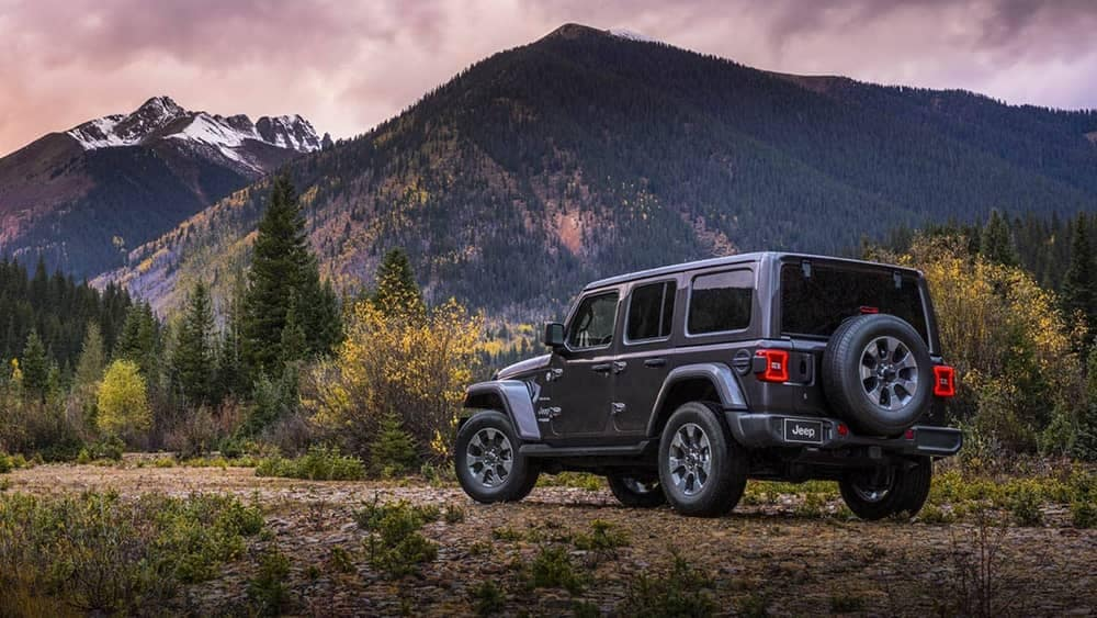 2019 Jeep Wrangler parked on the mountain