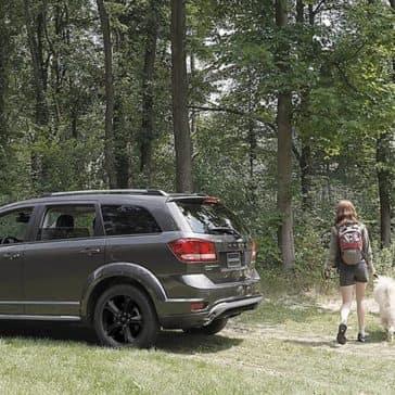 2018 Dodge Journey in woods
