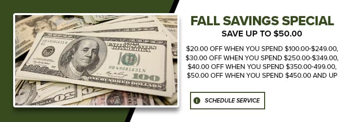 Fall Savings Special