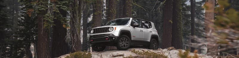 Jeep Renegade Worcester MA