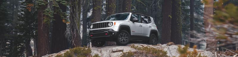 Jeep Renegade Reviews Worcester MA