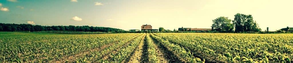 Stowe Farm Worcester MA