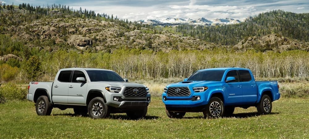 2020 Toyota Tacomas In Nature