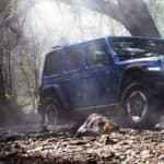 Blue 2020 Jeep Wrangler in Woods