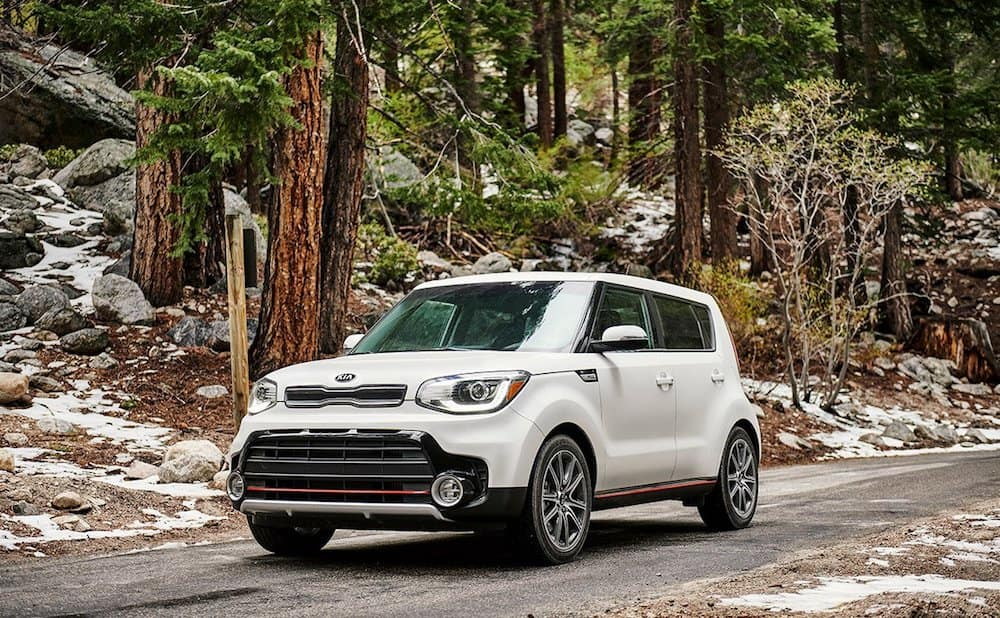 2019 Kia Soul in the Forest
