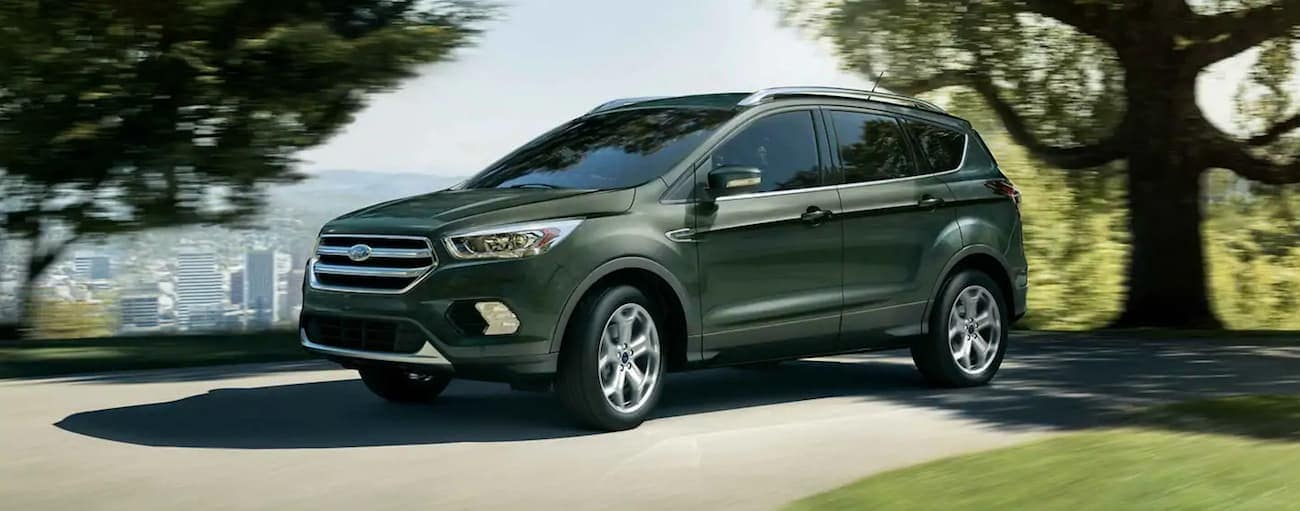 A green 2019 Ford Escape driving along a tree-lined road with a city in the back