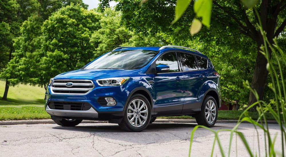A deep blue used Ford Escape with green trees and bushes in the background