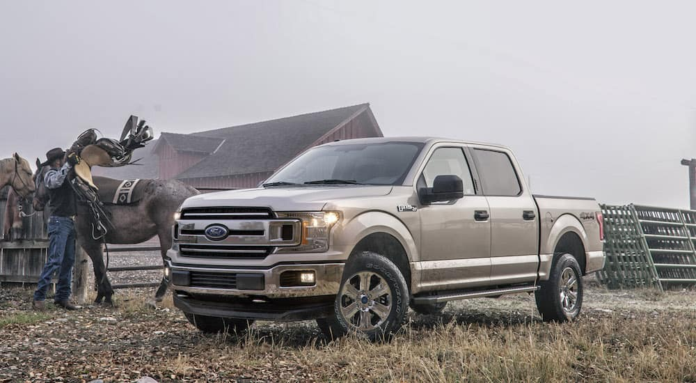 A used silver 2018 Ford F-150 on a quiet ranch on a foggy day