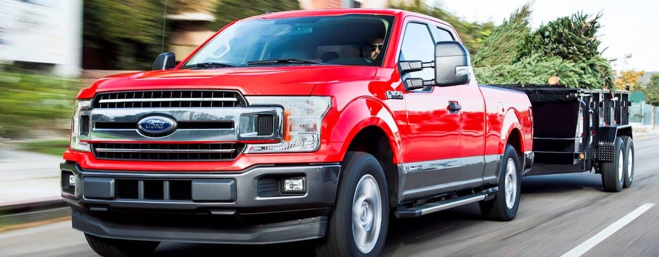 A red Ford 150 tows a trailer full of trees