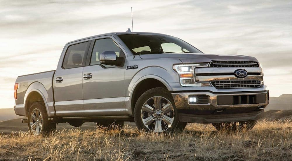 A silver 2019 Ford F-150 in a grassy field at sunset