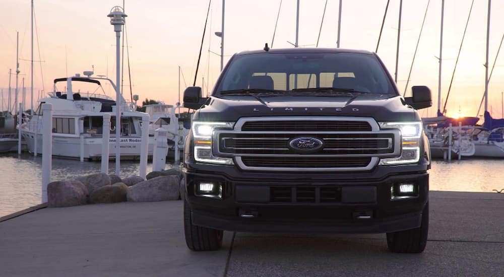 A black 2019 Ford F-150 Limited from the front at a marina with boats in the back at sunset