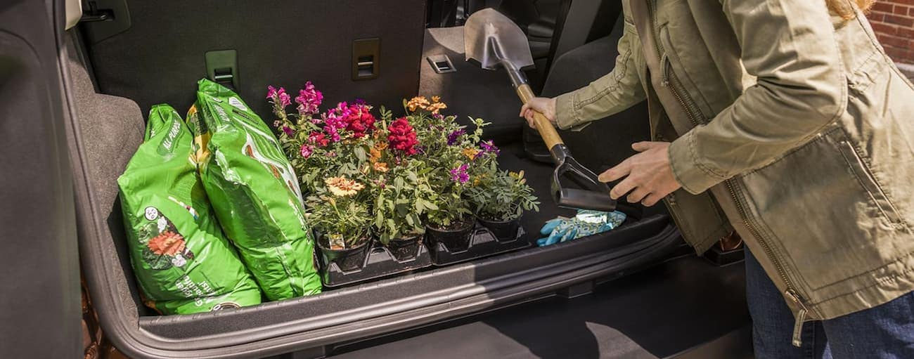 Loading plants and supplies into the rear of a 2019 Ford EcoSport