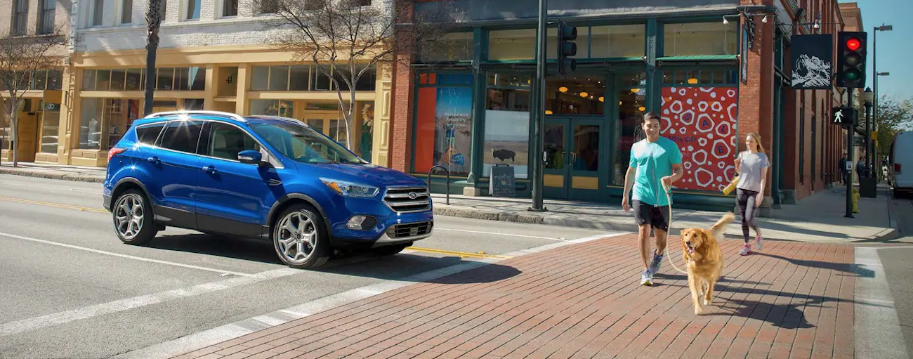 A blue 2019 Ford Escape is stopped at a crosswalk while a dog is walking past with  the owner. The Escape has many more safety features when comparing the 2019 Ford Escape vs 2019 Nissan Rogue.