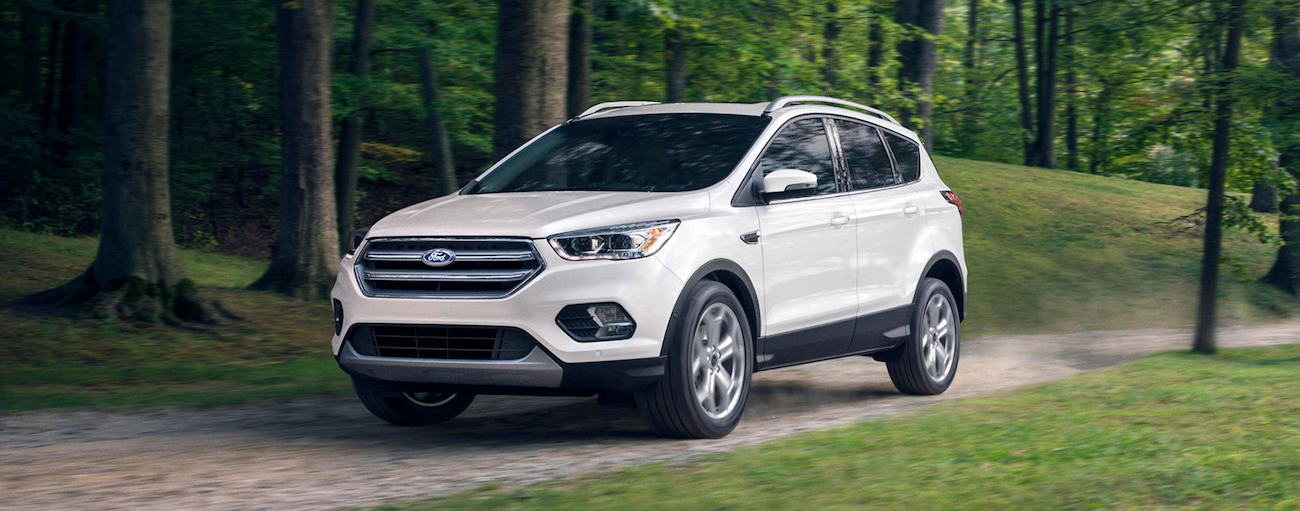 A white 2019 Ford Escape is driving down a dirt road in the woods. Check out performance when comparing the 2019 Ford Escape vs 2019 Toyota RAV4.