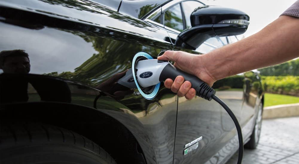 A black 2019 Ford Fusion Energi is charging.