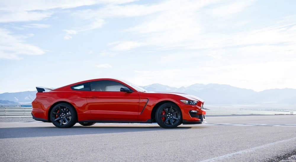 A red 2019 Ford Mustang is parked on a track against a bright sky and mountains
