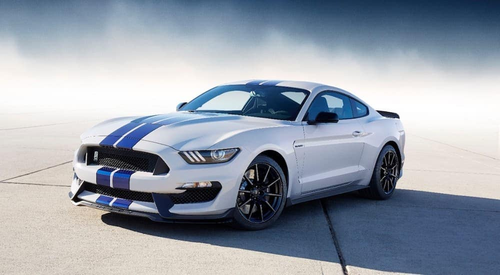 A white 2019 Ford Mustang with blue racing stripes is shown with tire smoke in the background.