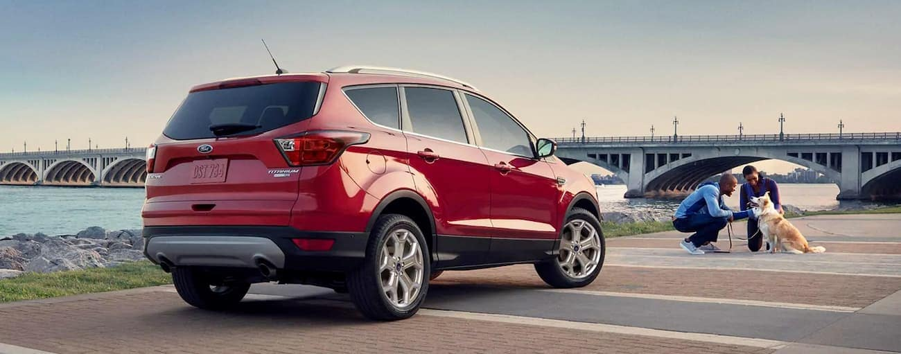 Two people are petting a dog in between their 2019 red Ford Escape and a bridge.