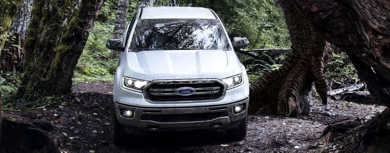 A white 2019 Ford Ranger, which wins when comparing cost for the 2019 Ford Ranger vs 2020 Jeep Gladiator, is driving through the woods.
