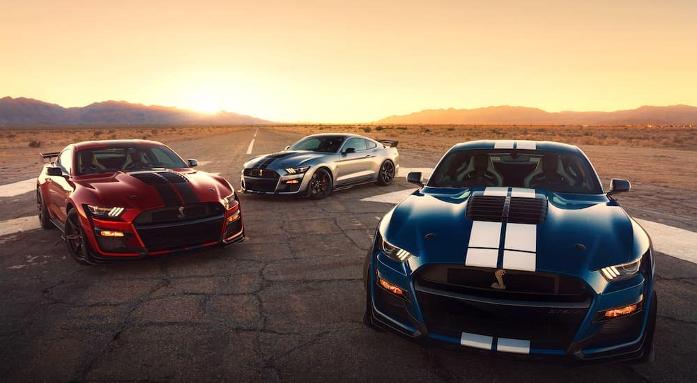 Three 2020 Ford Mustang Shelby GT500s are parked on a desert track at sunset.