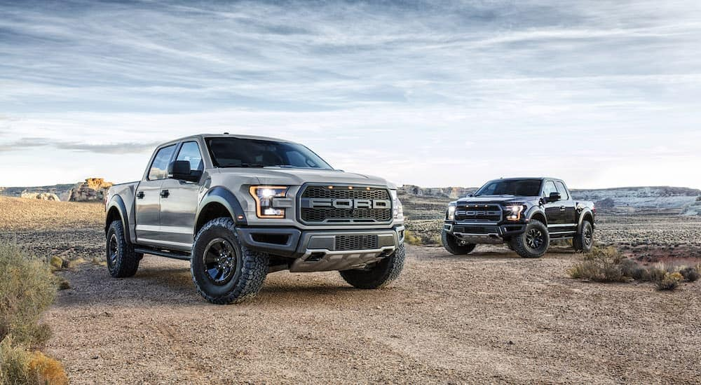 Two 2017 Ford Raptors are parked off-road.