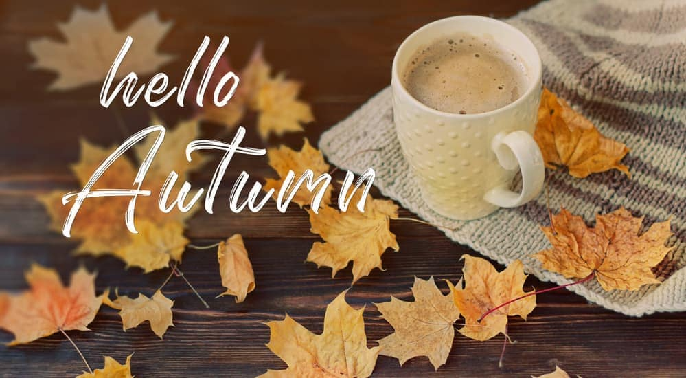 """A coffee cup next to leaves with the saying, """"Hello Autumn."""""""