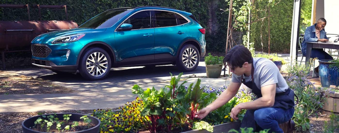 A blue 2021 Ford Escape is shown from the side parked next to a man tending a garden.