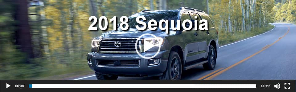 2018 Sequoia Video Overview