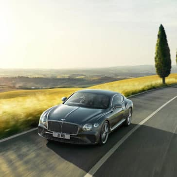 Bentley Continental Driving