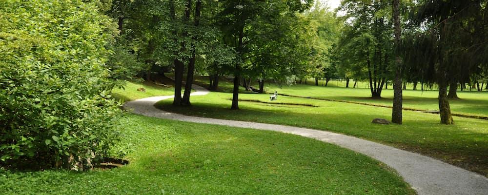 walking path through sunny park