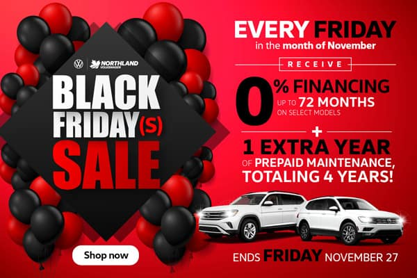 Black Fridays Sale