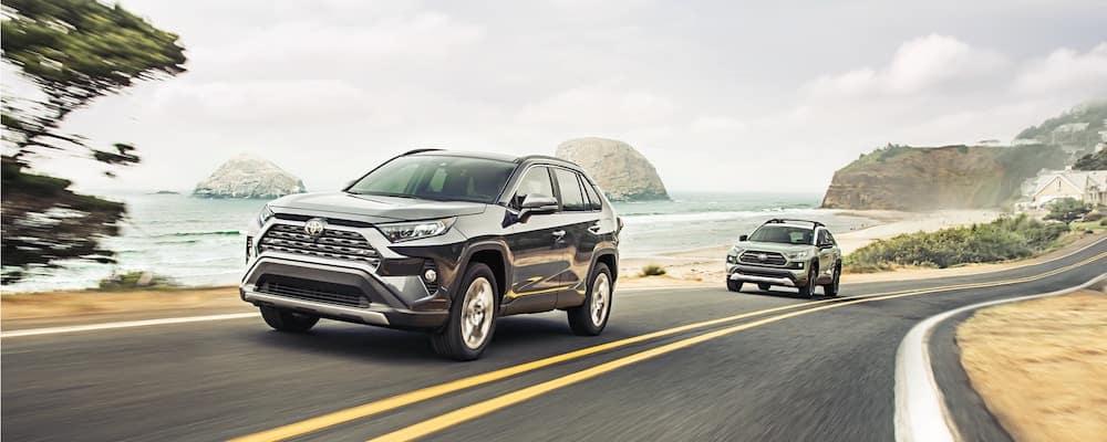 2019 Toyota RAV4 on Highway