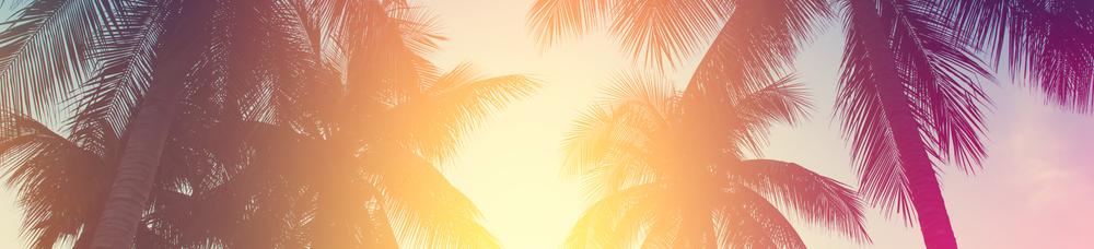 Miami Winter Event Guide