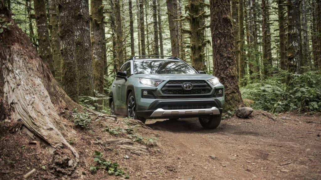 2019 Toyota RAV4 in the woods