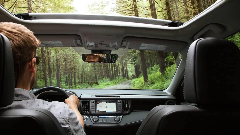 2018 Toyota RAV4 Windows and Sunroof