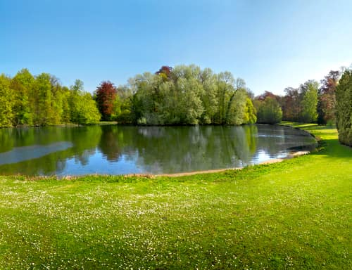 lake in the park