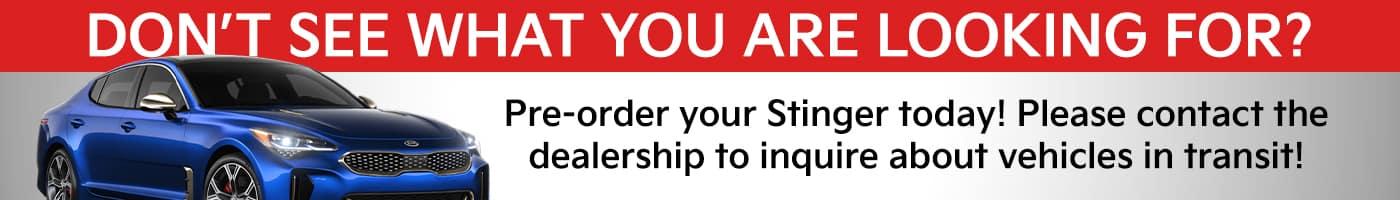 Pre Order Stinger