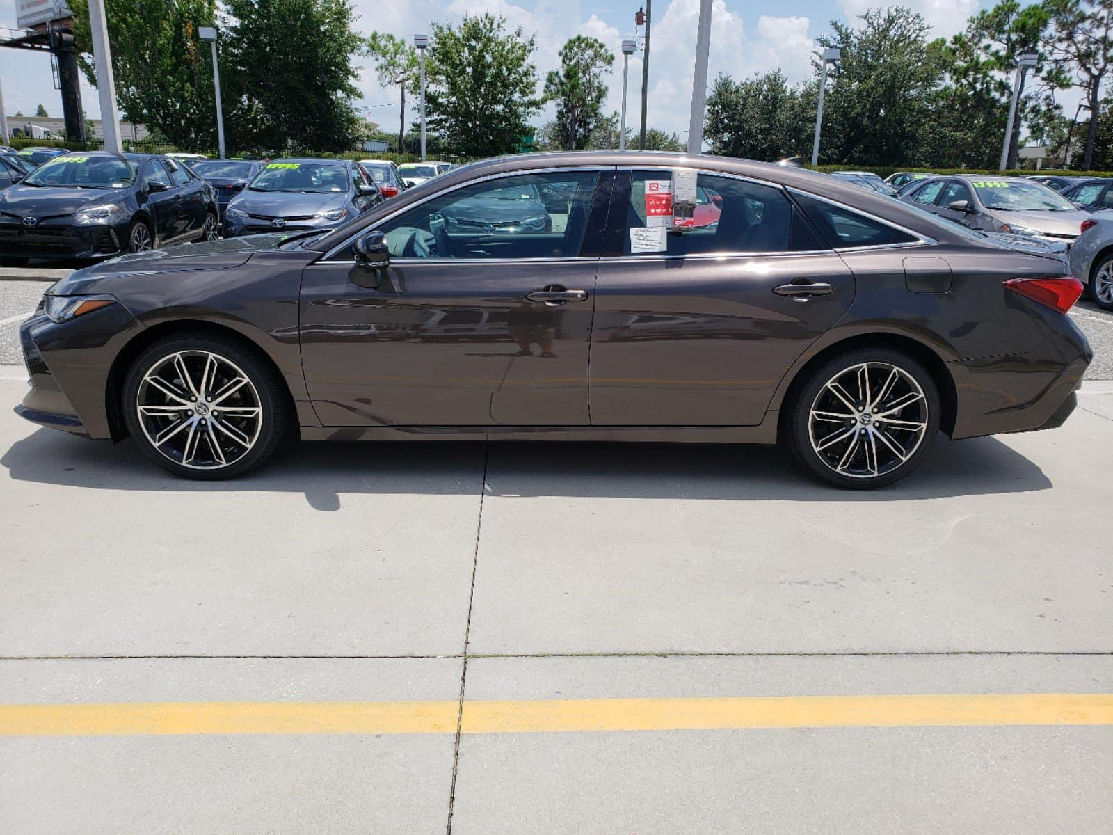 Test drive the new 2019 Orlando Toyota Avalon.