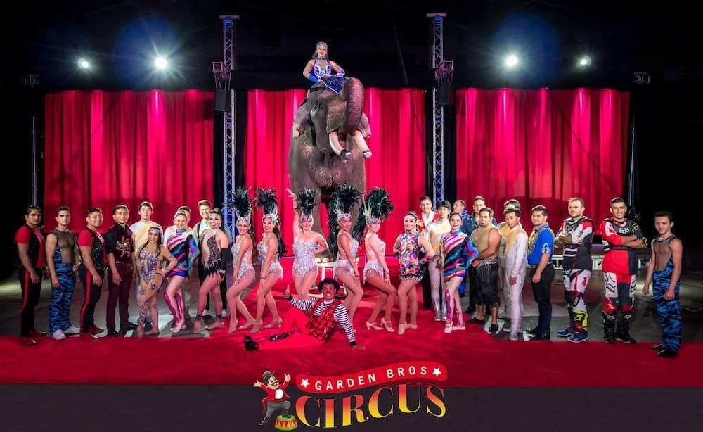 Circus at UCF